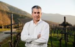 Primus José Aguirre - Agriculture Manager Winery Image