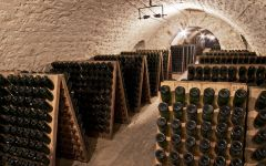 Champagne Barons de Rothschild The Cellar Winery Image