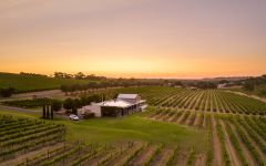Angove Family Winemakers  Winery Image