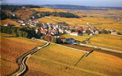 Maison Roche de Bellene The Village of Volnay  Winery Image
