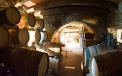 Vietti Cellar at Vietti Winery Image