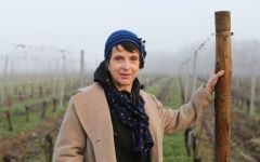 Chateau Fonplegade Corinne Comme, Biodynamic Consultant Winery Image