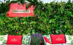 Piper-Heidsieck  Winery Image