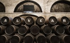 Alvear  Winery Image