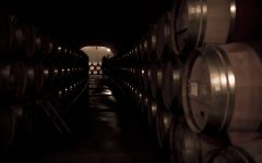 Faust Faust Barrel Room Winery Image