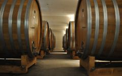 Primus Primus Barrel Room Winery Image