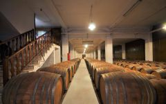 Vaeni Naoussa The Cellar – Ageing the wine Winery Image