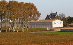 Chateau Mouton Rothschild The Mouton Style Winery Image