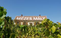 Royal Tokaji Wine Company Hughs Cottage in Mezes Maly Vineyard. Winery Image