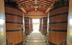 Querciabella Winemaking Style Winery Image