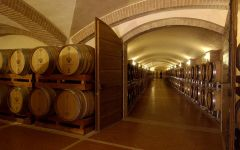 Zenato Cellar at Zenato Winery Image