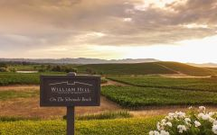 William Hill Estate Winery Located on the Silverado Bench Winery Image