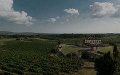 Schiopetto  Winery Image