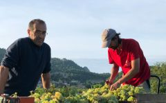Chateau de Saint Cosme Owner and Winemaker Louis Barruol (left) Winery Image