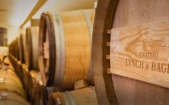 Chateau Lynch-Bages Oak Barrel Ageing  Winery Image