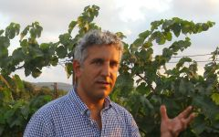 Carmel Head Winemaker Yiftach Peretz Winery Image