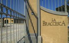 La Braccesca  Winery Image