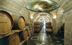 Mastroberardino Wine Cellars Winery Image