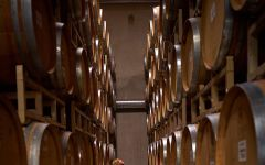 Columbia Winery  Winery Image