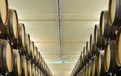 Bolla Barrel Room Winery Image