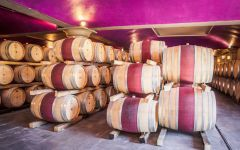 Brancaia Barrel Cellar Winery Image