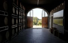Alessandro Rivetto La Morra Winery Image