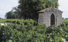 Chateau Pichon Longueville Comtesse de Lalande The Vineyard Winery Image
