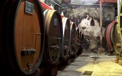 Hugel Winery Image