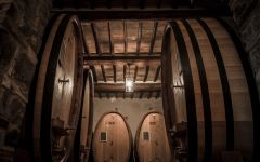 Piccini Winery Image