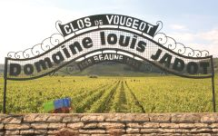 Louis Jadot Winery Image