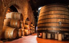 Broadbent Oak Foudres for aging the Ports Winery Image