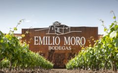 Emilio Moro New Bodega Winery Image