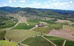 Viticcio The Hills of Chianti Winery Image