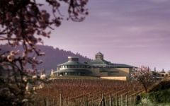 Vivanco Winery Image