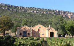 Anne Delaroche Winery Image