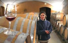 Domaine Anne Gros Winery Image