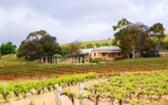 Greenock Creek Winery Image