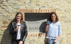 Pecchenino Lisa and Anna Winery Image