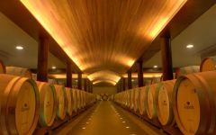 Lapostolle Barrel Room at Lapostolle Winery Winery Image