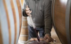 Alberico Meticulous Care in the Winery Winery Image