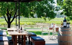Balgownie Estate Restaurant Patio Winery Image