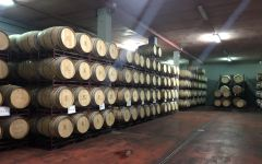 12 Linajes 12 Linajes Aging Room Winery Image