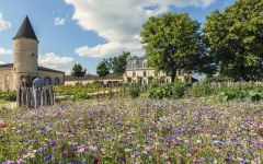 Chateau Guiraud The Garden of the Property Winery Image