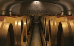 Alta Vista The Cellar Winery Image