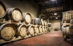 Alois Alois Barrel Room Winery Image