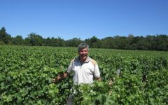 Domaine Cailbourdin Winemaker and Owner Alain Cailbourdin Winery Image