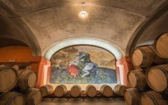 Tua Rita  Winery Image