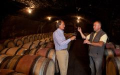 Domaine Antonin Guyon Barrel Room Winery Image