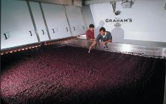 Graham's Robotic Lagar Winery Image