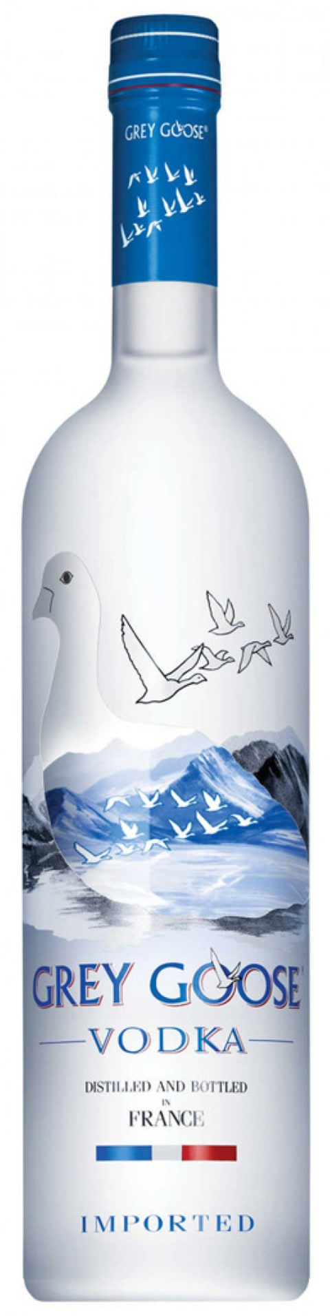 Grey Goose Vodka Front Bottle Shot